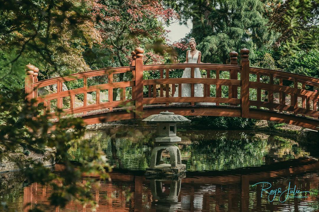 Botanical garden - Landscape