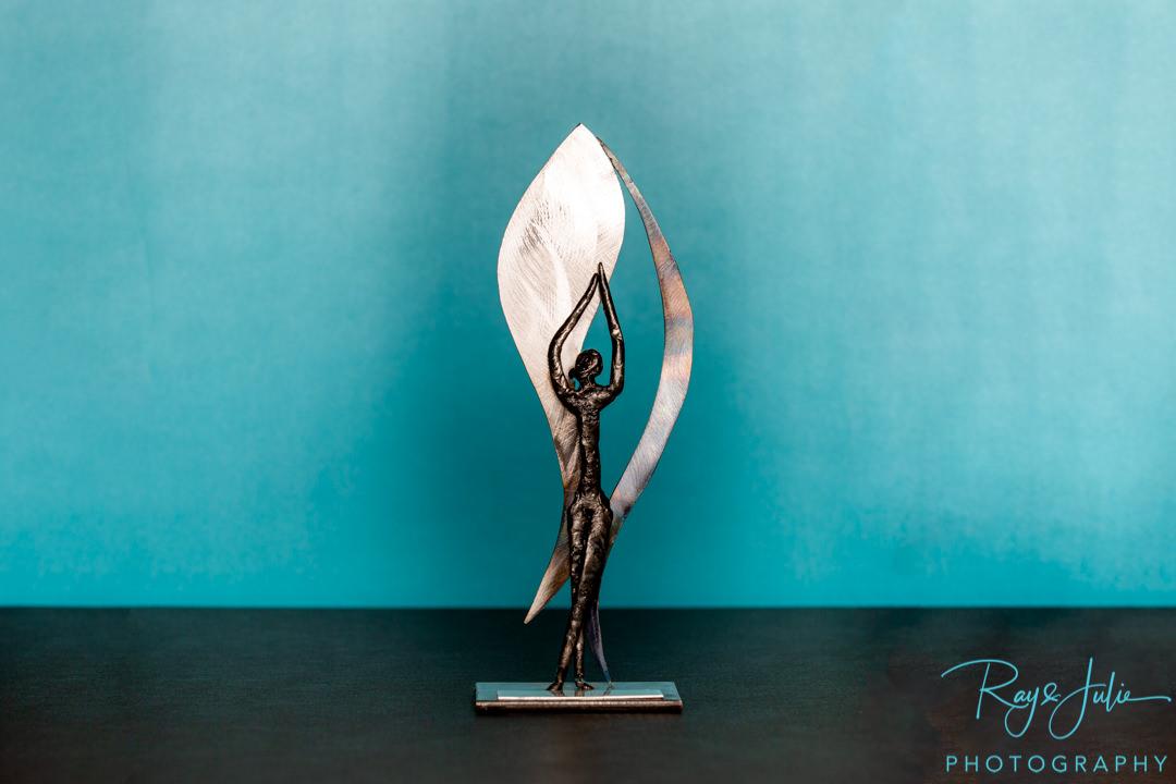 Yorkshire region master photographer award - MPA award - Yorkshire studio photographer of the year - Photography award