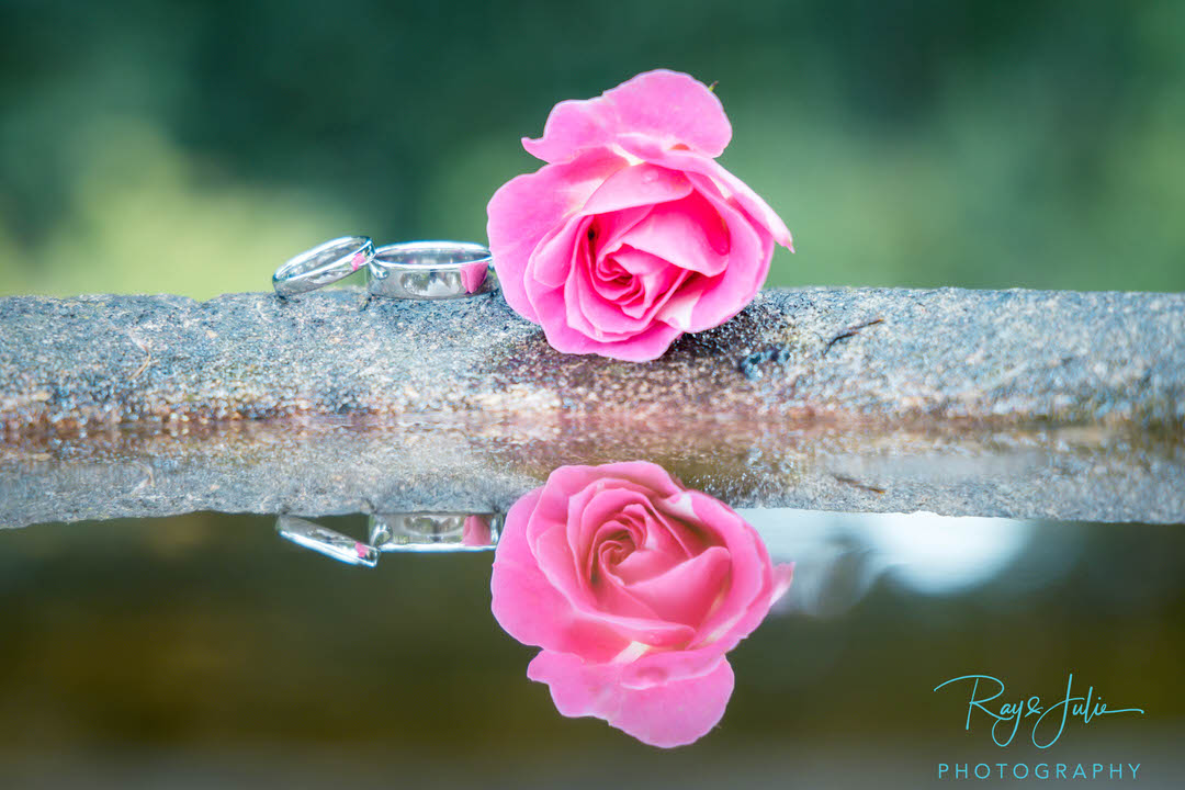 Wedding rings with flower and water reflection